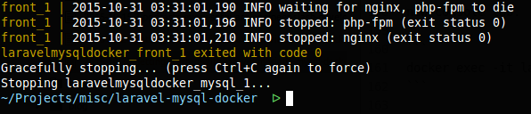 Laravel, MariaDB (MySQL) and docker, docker compose stop output